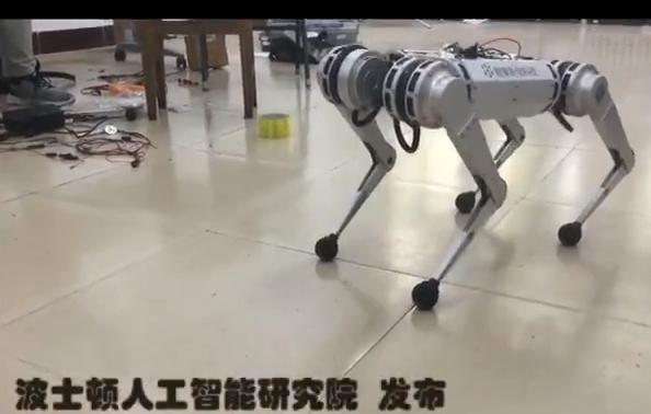 LexGo-力士狗-视频